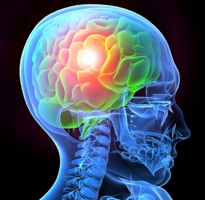 illustration of traumatic brain injury