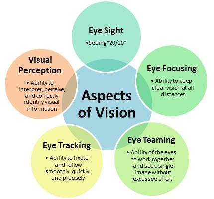 Aspects of vision