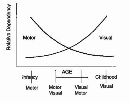 Visual Motor Hierarchy
